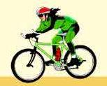 Sportliche Sitzposition - Mountainbike